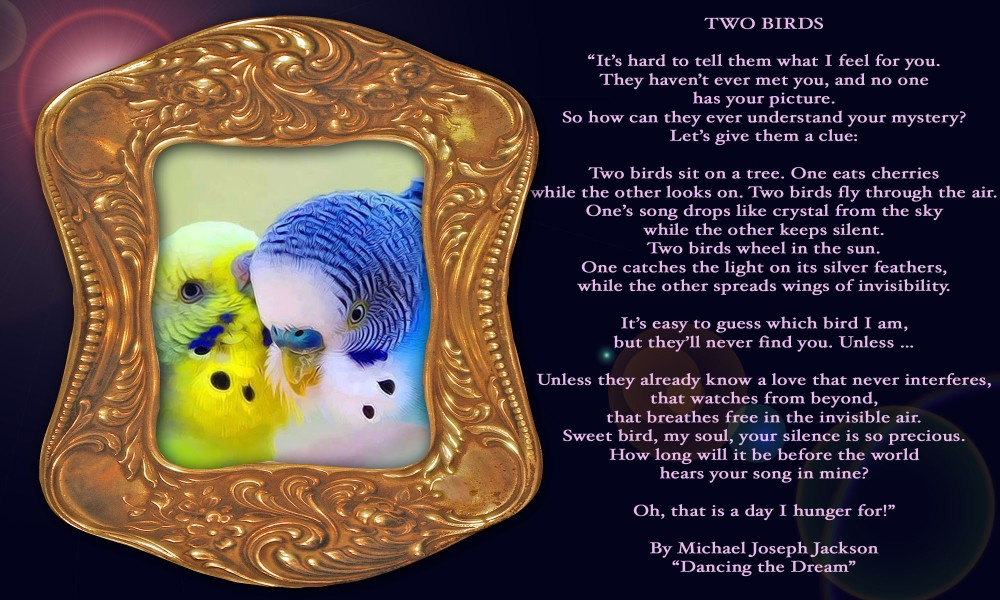 Michael Jackson´s intimate soul poetry to his Twin Soul Susan Elsa © Two Birds (she literally owned as a Child when he wrote it)