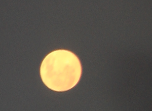 This is THE MOON looking like the Sun at Night, while in the Limousine Michael´s GHOSTS coincidently was put on from the Driver, going back 3 hour drive from Abu Simbel to Aswan.