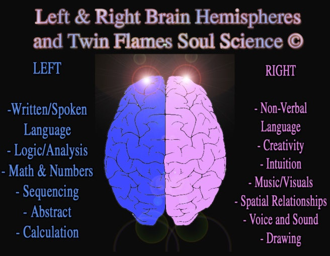 Left and Right Brain Twin Flames Sciences © New Science Theory for Twin Souls Research