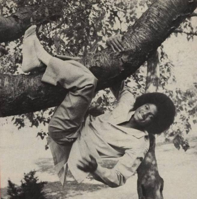 Michael Jackson Climbing Trees in Youth - Photo for Educational Purpose-