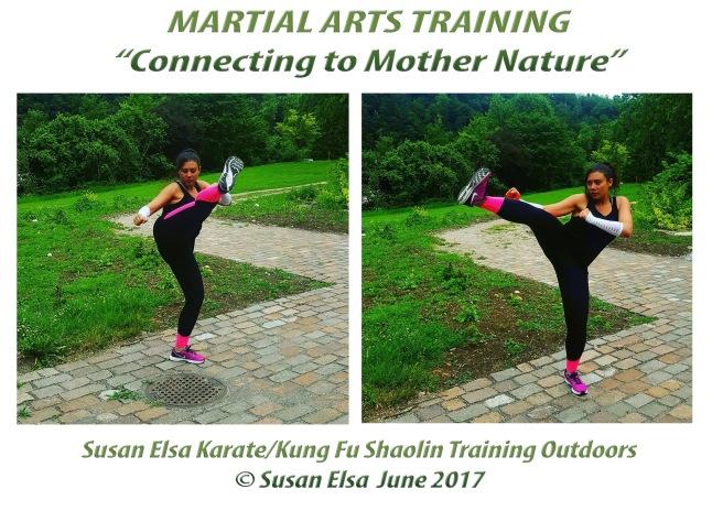 Martial Arts Training Summer Nature Karate Kung Fu Mix Shaolin Wisdoms Kicks © Susan Elsa June 2017