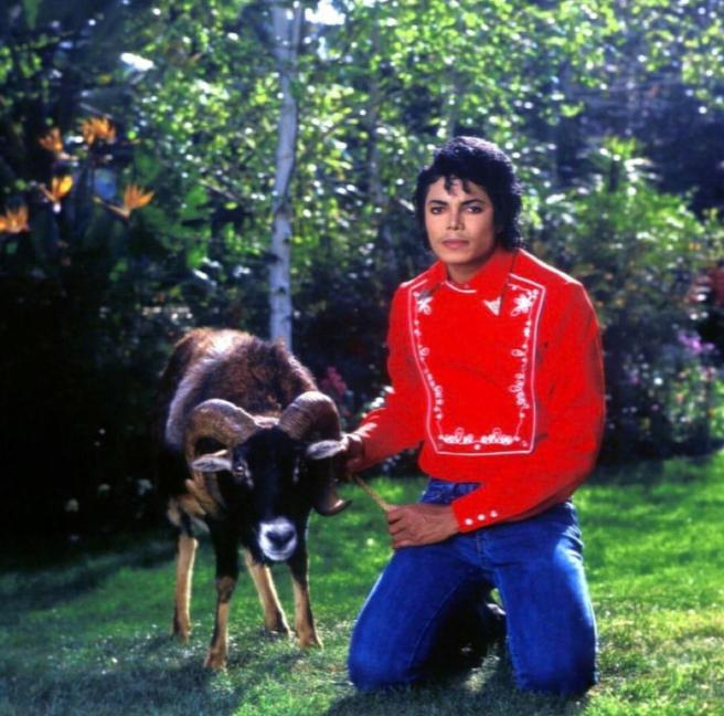 Michael Jackson and Aries Animal Real - ArchangelMichael777